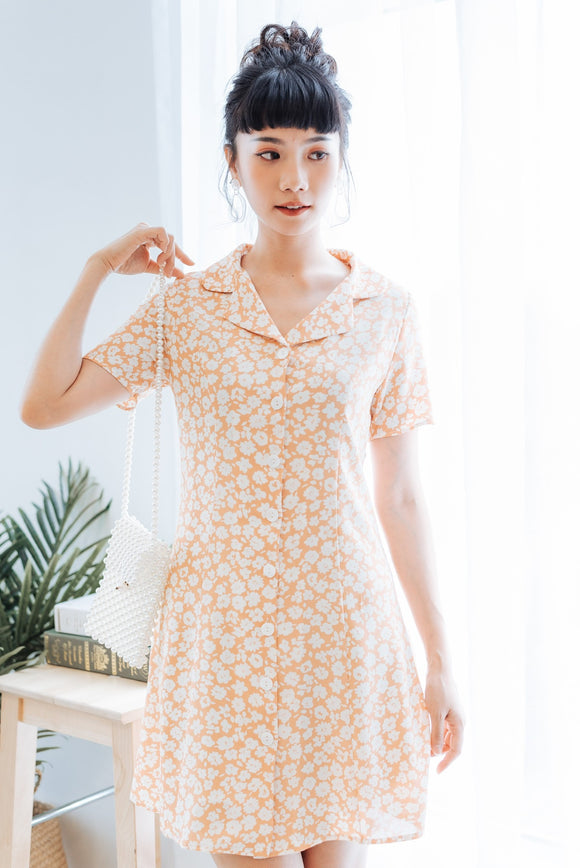 Summer Button Down Printed Dress