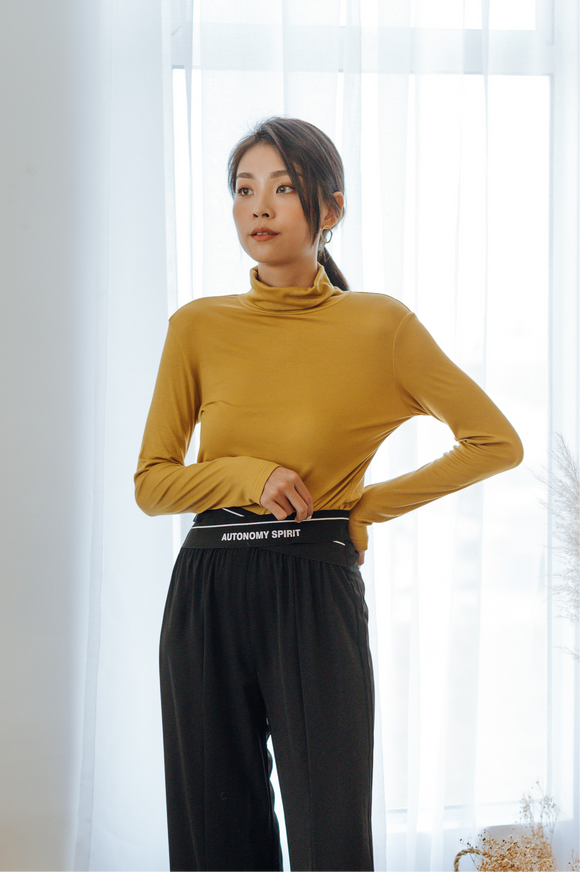 Saige Turtle-neck Top