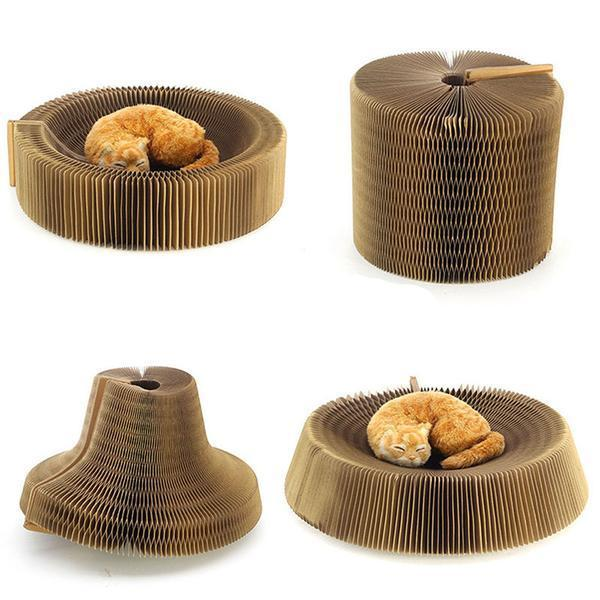 Cat Beds & Baskets - A Scratcher And A Lounge For Your Lovely Cat