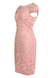 Dorothy Perkins Pink Ladies Dress