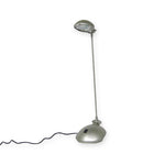 Long Neck Reading Lamp