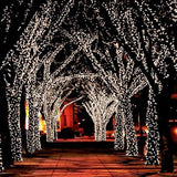 55 Feet LED Solar Powered Fairy Lights