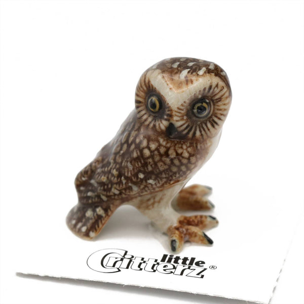 "Little Critterz ""Sawyer"" Saw-whet Owl Porcelain Miniature"