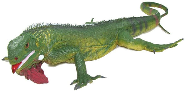 Mamejo Nature Jumbo Rubber Iguana Toy Figurine 22""
