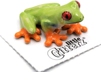 "Little Critterz ""Clinger"" Red-Eyed Frog"