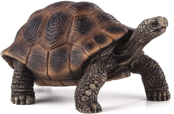 MOJO Giant Tortoise Realistic International Wildlife Hand Painted Toy Figurine