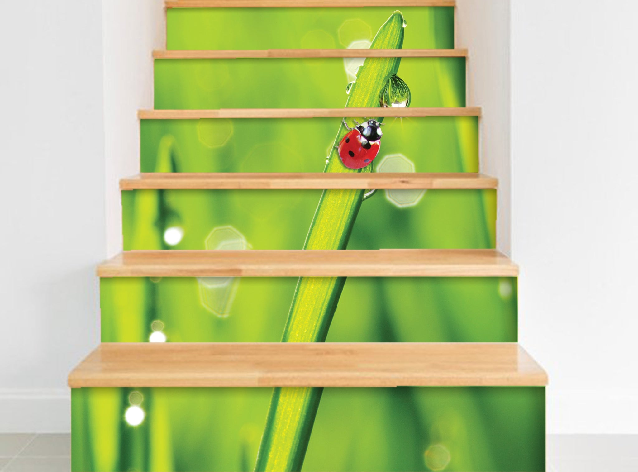 Ladybug- Stickers for stairs NS019