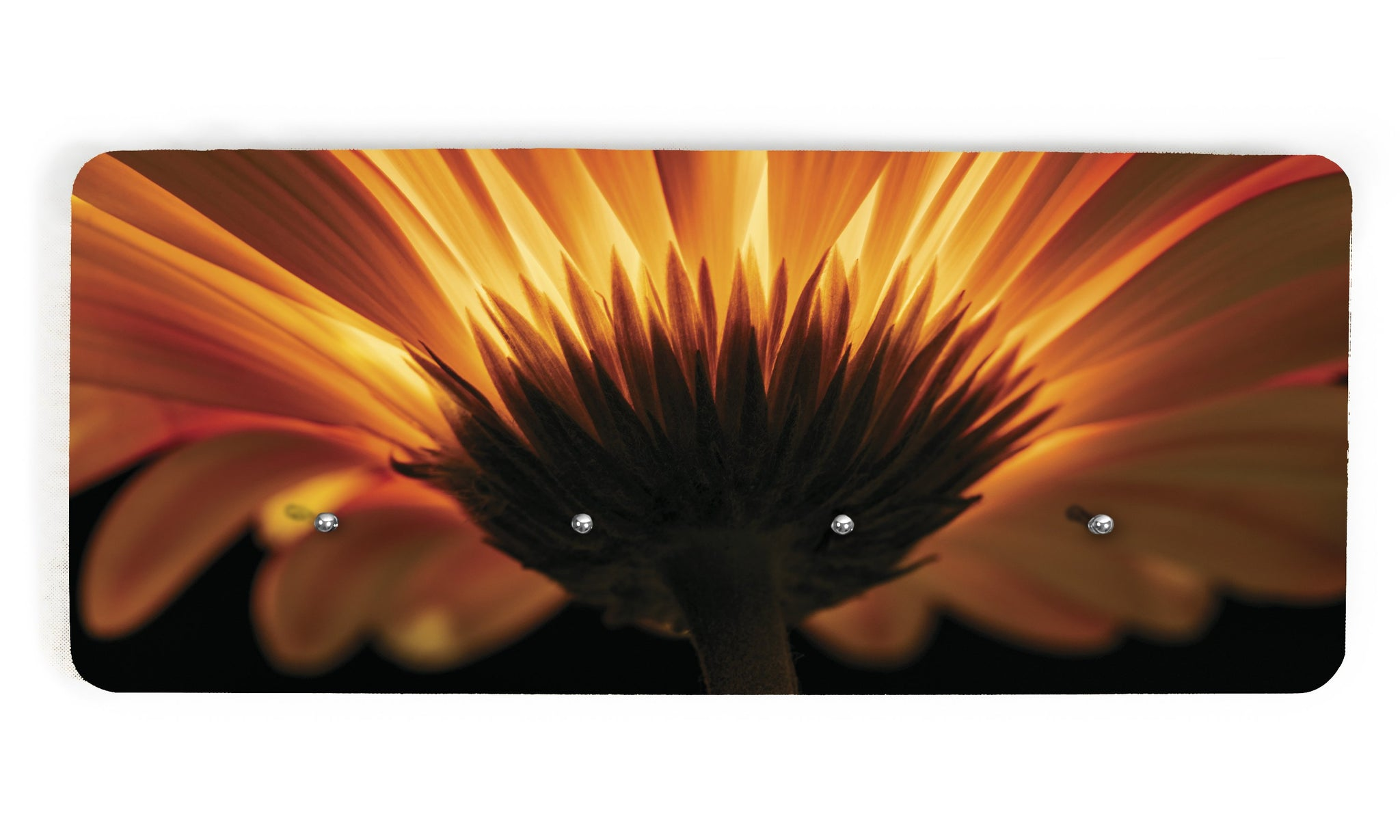 Art wall hangers sunflower - AV037 - Art Life Decor