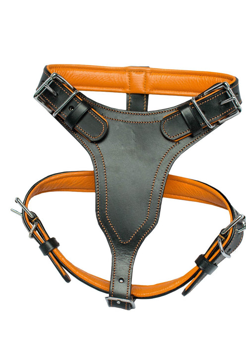 Arete Heavy Duty Leather Dog Harness
