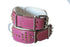 Royal Edition Pink Dog Collar