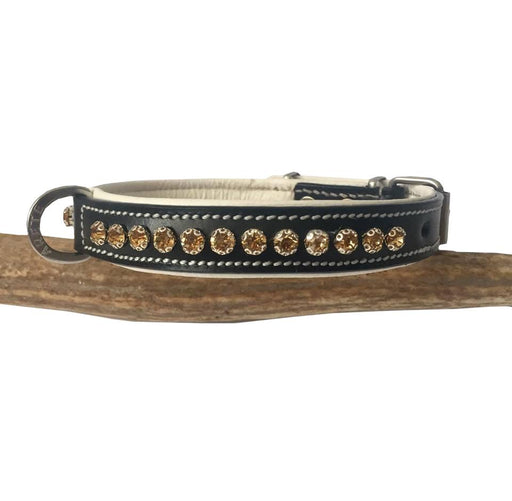 Amber Stone Petite Luxury Dog collar