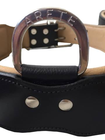 Handle/Agitation Leather Dog Collar