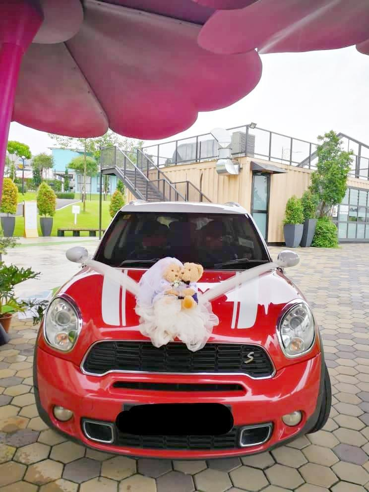 Wedding Car Decoration - Bridal Bear Couple