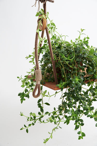 Cacao Outdoor Swing