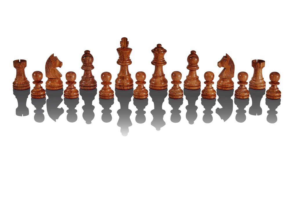 Chess Computer MILLENNIUM The King Performance - chess24