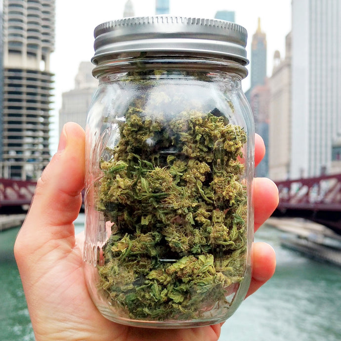 Bulk CBD Hemp Flower - Chicago Cannabis Company