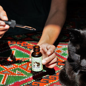 Pet CBD Drops