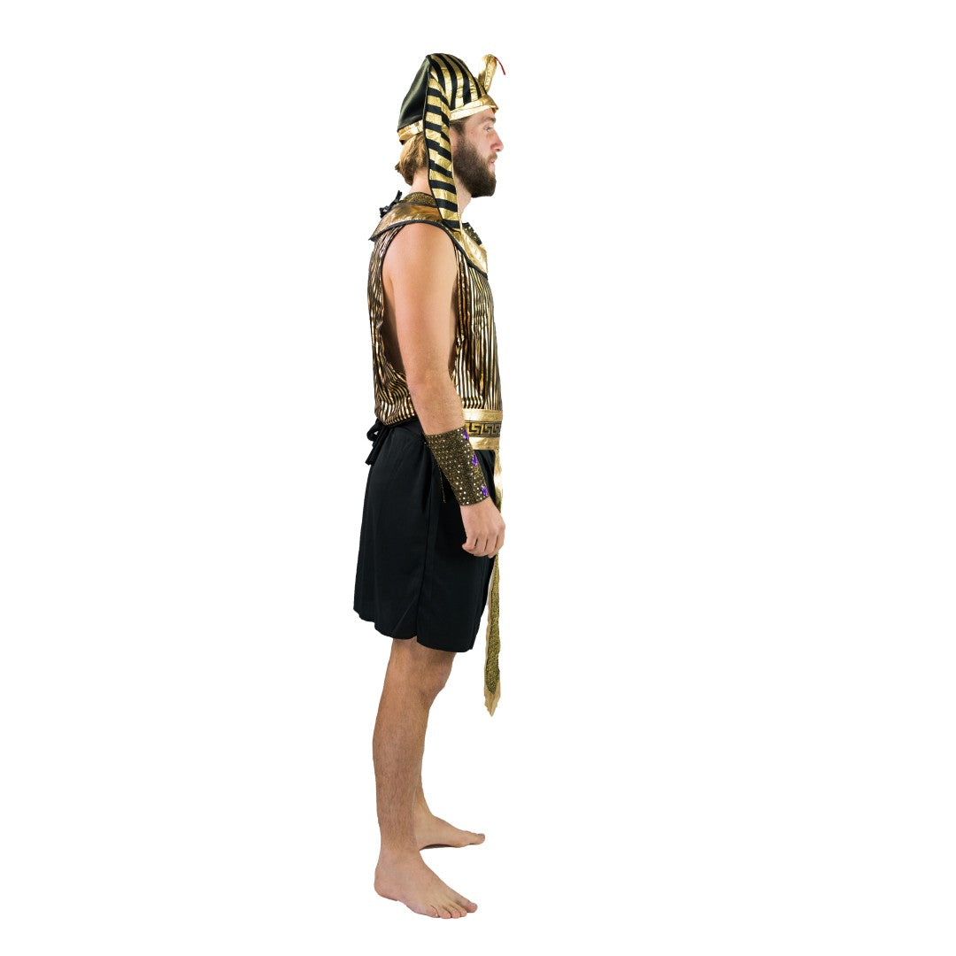 Adults Golden Pharaoh Costume