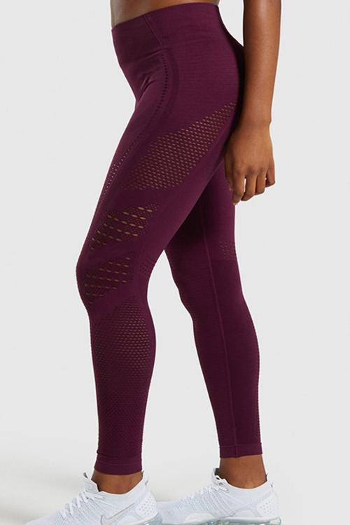 Mesh Seamless T Shirt Leggings Set