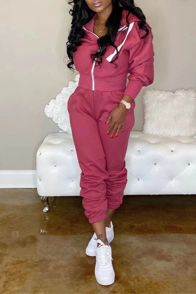 Hooded Collar Zipper Up Solid Color Pants Set