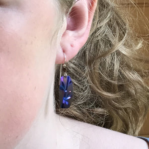Brown/Blue Amble Earrings