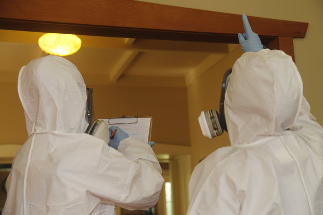 Person in white hazmat suit taking asbestos notes on a clipboard while another person in a white hazmat suit points at a building material during an asbestos survey in a house