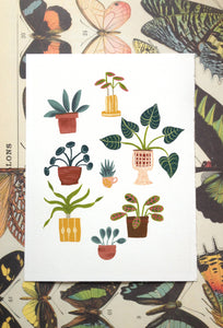 Potted Plants Illustration Print