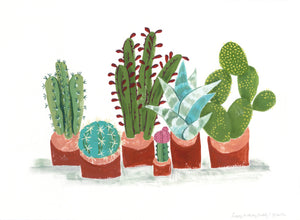 potted plants cactus succulents illustration painting