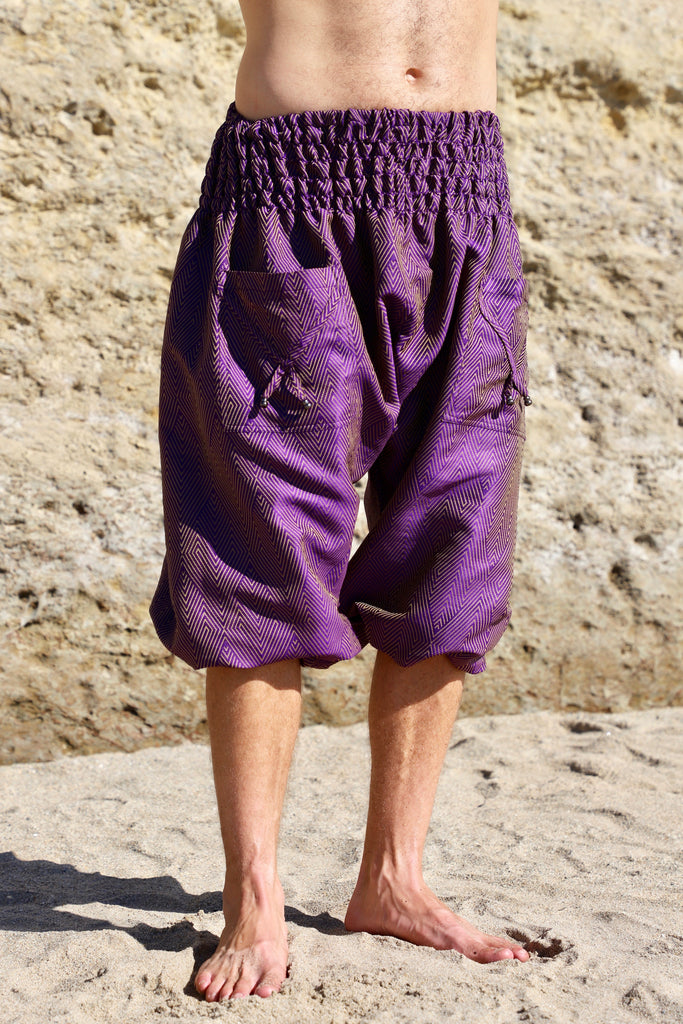 Purple Harem Pants