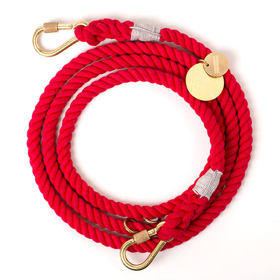 The Standard x Found My Animal Adjustable Dog Leash