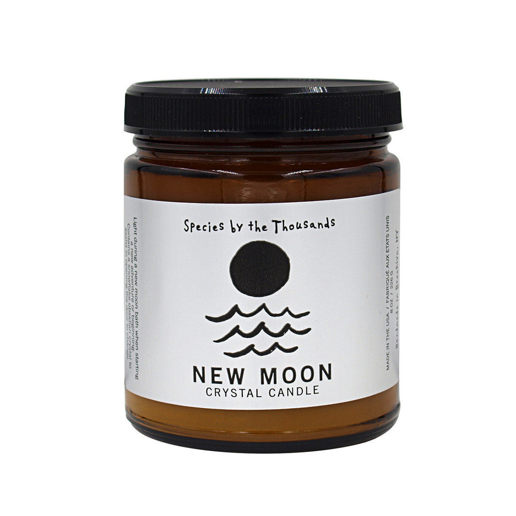 Species by the Thousands-New Moon Crystal Candle