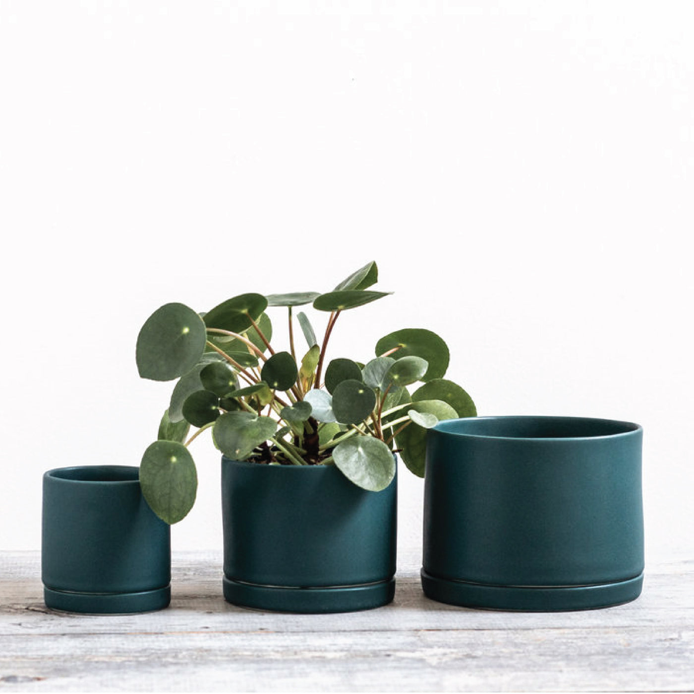 Teal Handmade Ceramic Planter