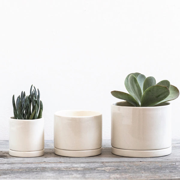 White Handmade Ceramic Planter