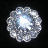#14916 - Center Stone Daisy Button 11/16""