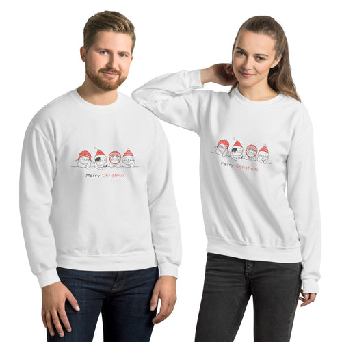 Unisex Merry Christmas Kittens Sweatshirt