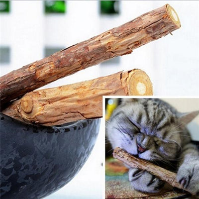 10Pcs Cat Cleaning Teeth Pure Natural Catnip Molar Toothpaste Stick Cat Snacks Sticks