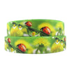 "1"" 25mm David accessories ladybug high quality printed polyester ribbon 5yds,DIY handmade materials,wedding gift,5Y55183 - Dailytechstudios"