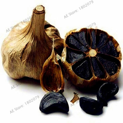 100pcs/bag Garlic Seeds Healthy And Delicious Pungent Spice Vegetable Seeds Pure Natural And Organic Vegetable Seeds  UpCube- upcube
