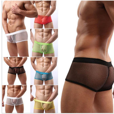 1 pc Men's Sexy Boxers Shorts Transparent Mesh Underwear Sexy Men's Clothing Trunks Intimate Accessories - Dailytechstudios