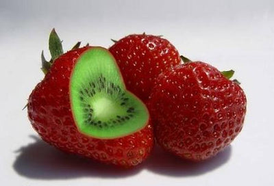 100pcs Rare Strawberry Kiwi Seeds Organic Sweet Fruit Seeds Of Perennial Garden Fruit Bonsai Strawberry Seed Free Shipping  UpCube- upcube