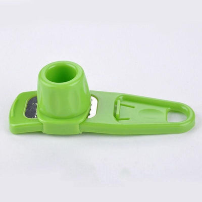 1 pcs Chic Garlic Ginger Grind Tool Creative Multi-Functional Kitchen Home Accessories Color Random Hot Sale - Dailytechstudios