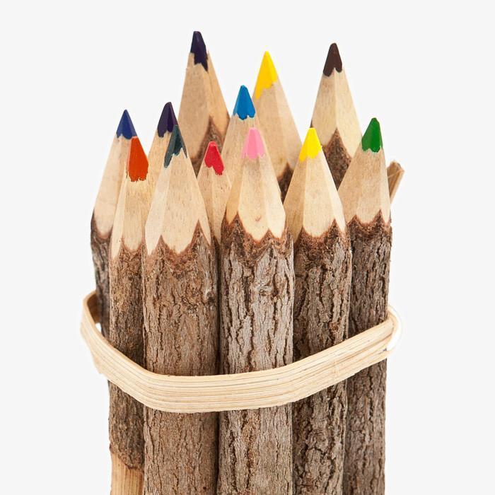 #1215 Reclaimed Branch Colored Pencils - Dailytechstudios