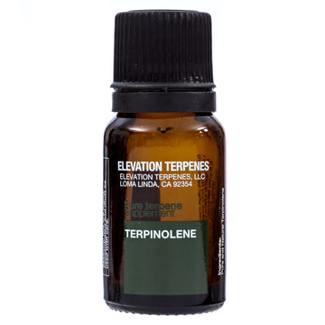 Terpinolene Food Grade Natural Terpene - Elevation Terpenes