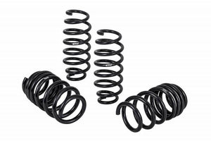 Eibach Pro-Kit Performance Springs Tesla 3 Long Range RWD and Standard Range Plus