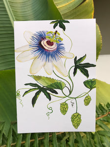 Passionflower & Hops
