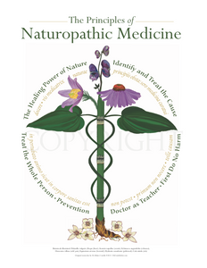 Naturopathic Principles | Botanical Caduceus