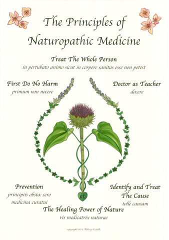 Hand Colored Principles of Naturopathic Medicine | Classic