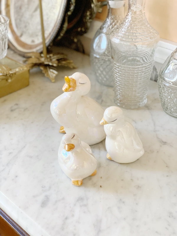 Lil' Shimmery Duckling Set