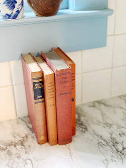 Rust and Terra-cotta Book Set