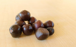 Camellia sinensis 'Small Leaf Tea' seeds
